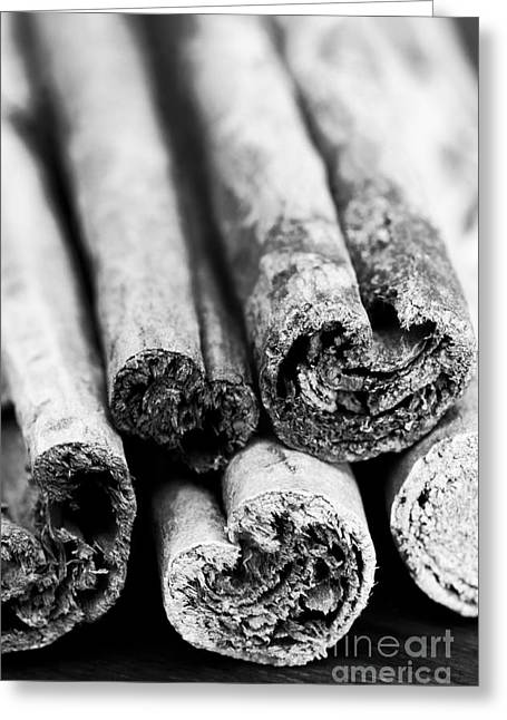 Cassia Greeting Cards - Sticks of Cinnamon Greeting Card by Anne Gilbert