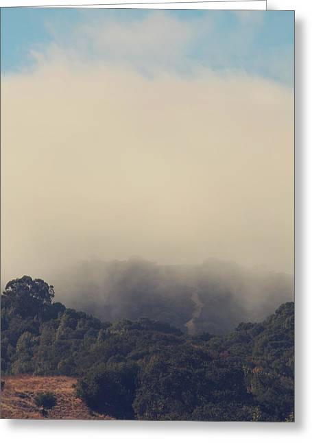 Mist Photographs Greeting Cards - Still Hanging On Greeting Card by Laurie Search