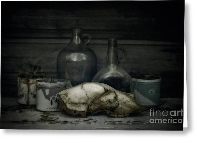 Morbid Greeting Cards - Still Life With Bear Skull Greeting Card by Priska Wettstein