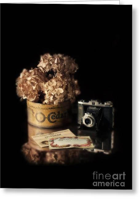 Dried Hydrangeas Greeting Cards - Still Life with Hydrangea and Camera Greeting Card by Jill Battaglia