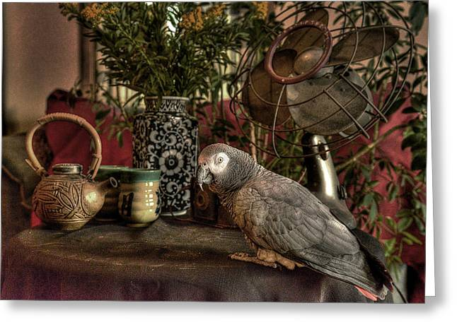 Parrot With Flower Greeting Cards - Still Life with Rosie Greeting Card by William Fields