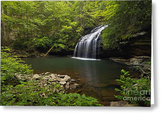 North Fork Greeting Cards - Stinging Fork Falls - D005706 Greeting Card by Daniel Dempster