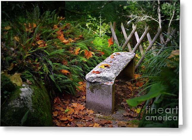 Stone Bench Greeting Card by Carlos Caetano