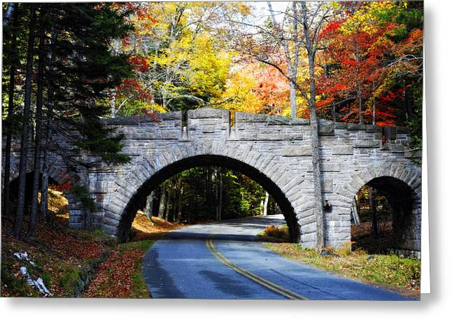 Carriage Road Greeting Cards - Stone Bridge in Acadia Greeting Card by George Oze