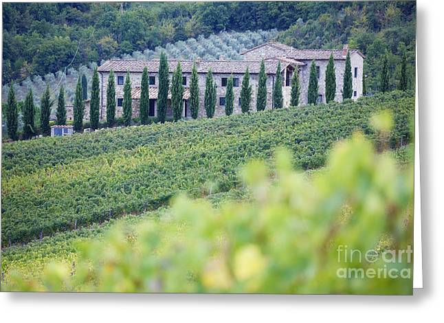 Stone Farmhouse And Vineyard Greeting Card by Jeremy Woodhouse