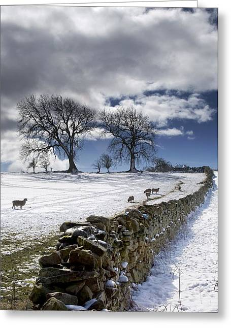 Rural Snow Scenes Greeting Cards - Stone Fence, Weardale, County Durham Greeting Card by John Short