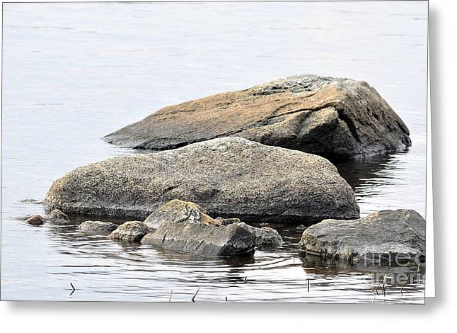 Reflecting Water Pyrography Greeting Cards - Stone in calm water Greeting Card by Conny Sjostrom