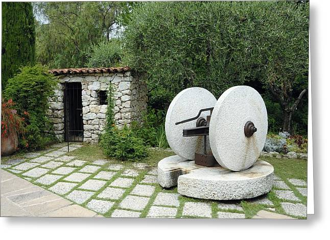 Olive Garden Greeting Cards - Stone Olive Press Greeting Card by Chris Hellier