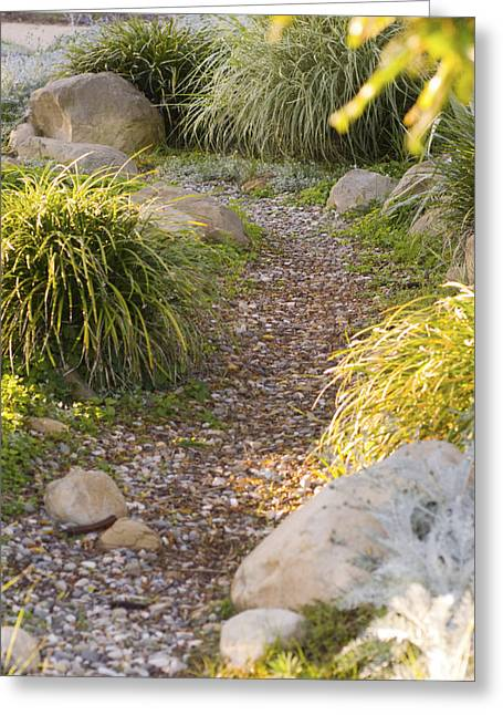 Green Day Greeting Cards - Stone Path Through Garden Greeting Card by James Forte