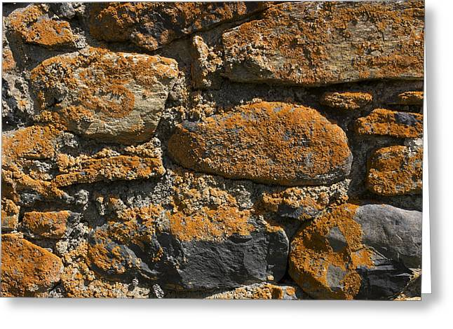 Entire Greeting Cards - Stone wall Greeting Card by Bernard Jaubert