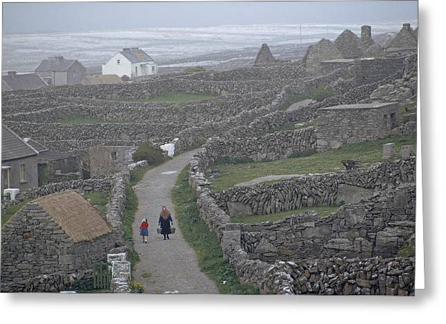 Ways Of Life Greeting Cards - Stone Walls Honeycomb The Pastures Greeting Card by Winfield Parks