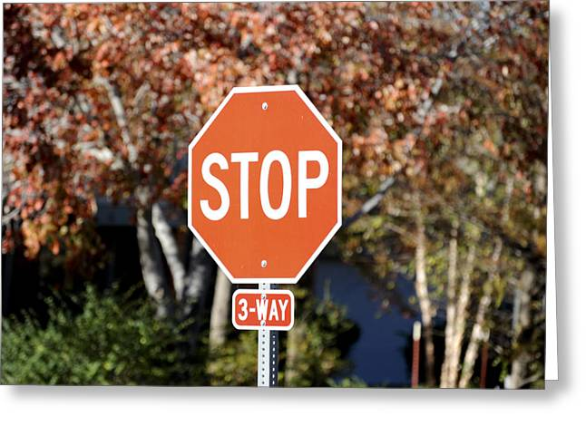 Best Sellers -  - Traffic Control Greeting Cards - Stop Greeting Card by Malania Hammer