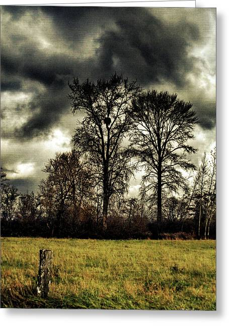 Storm Digital Greeting Cards - Storm brewing Greeting Card by DMSprouse Art