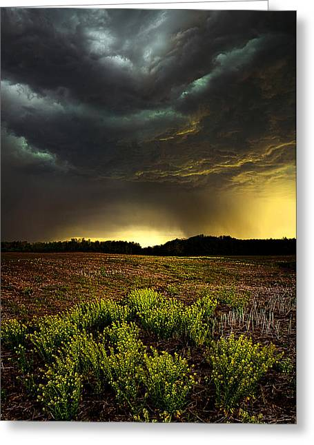 Winter Storm Greeting Cards - Storm Chaser Greeting Card by Phil Koch