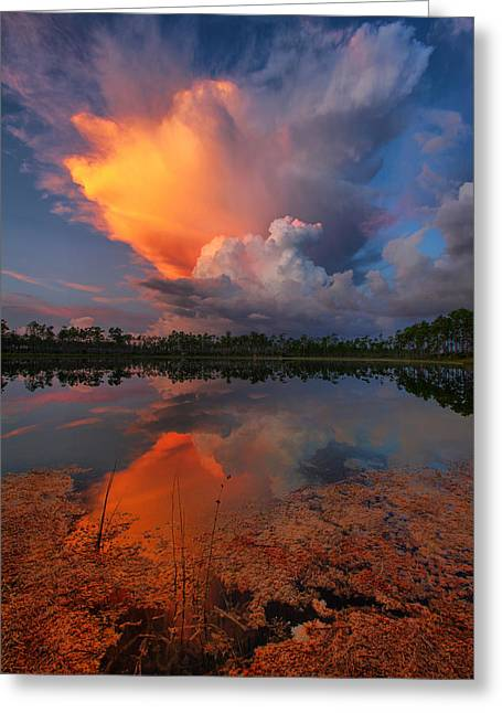 Claudia Domenig Greeting Cards - Storm Clouds at Dawn Greeting Card by Claudia Domenig