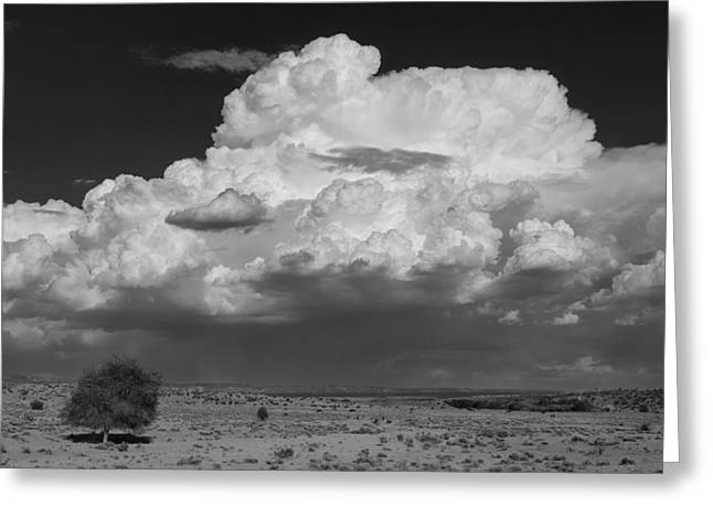 Monsoon Greeting Cards - Storm clouds Greeting Card by Carolyn Dalessandro