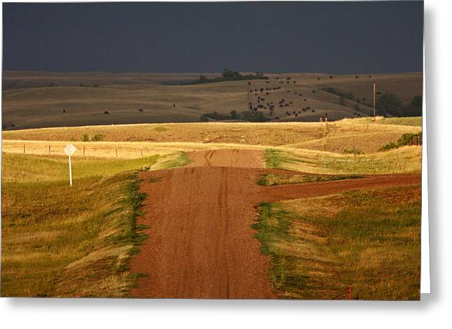 Storm Clouds In Saskatchewan Greeting Card by Mark Duffy