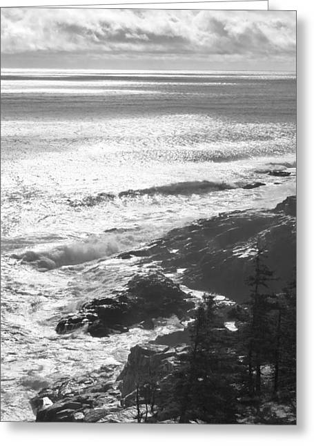 Coastal Maine Greeting Cards - Storm Hits Rocky Seascape of Acadia National Park Black And White Photograph Greeting Card by Keith Webber Jr