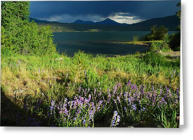Storm in Dillon Greeting Card by Lynn Bauer