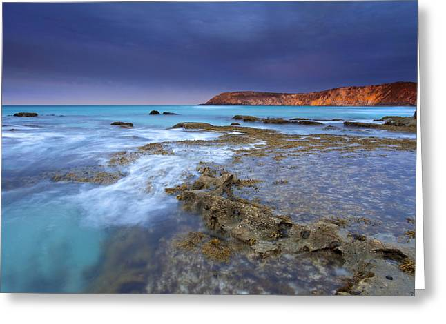 Kangaroo Photographs Greeting Cards - Storm Light Greeting Card by Mike  Dawson