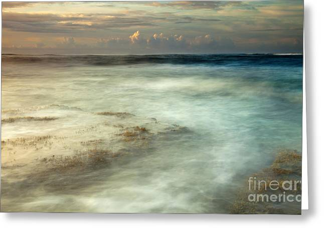 Koloa Greeting Cards - Storm Rise Greeting Card by Mike  Dawson