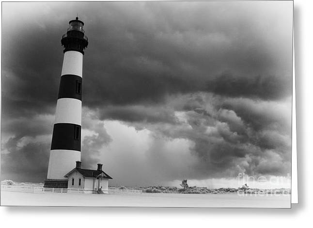 Storm Prints Greeting Cards - Stormy Bodie in Black and White Greeting Card by Dan Carmichael