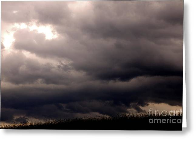 Dark Skies Greeting Cards - Stormy Sky over Pasture Greeting Card by Thomas R Fletcher
