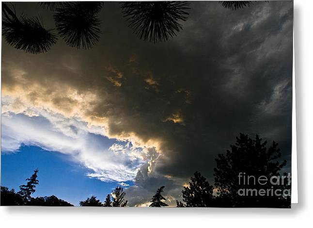 Summer Storm Greeting Cards - Stormy Sky Greeting Card by Terry Elniski