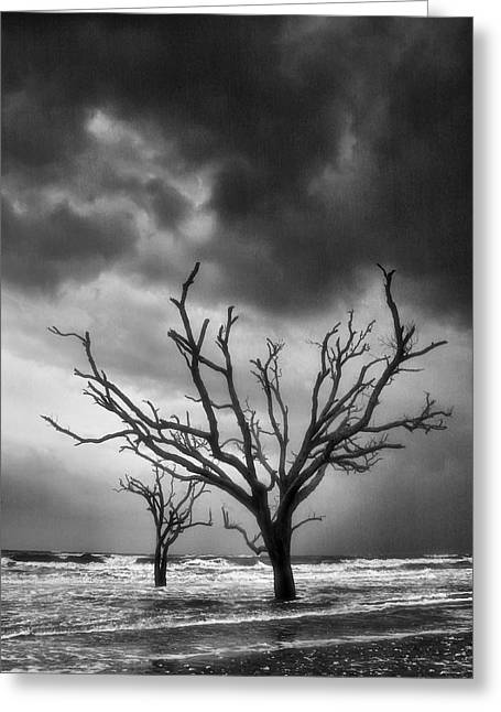 Storm Prints Greeting Cards - Stormy Weather Greeting Card by Steven Ainsworth