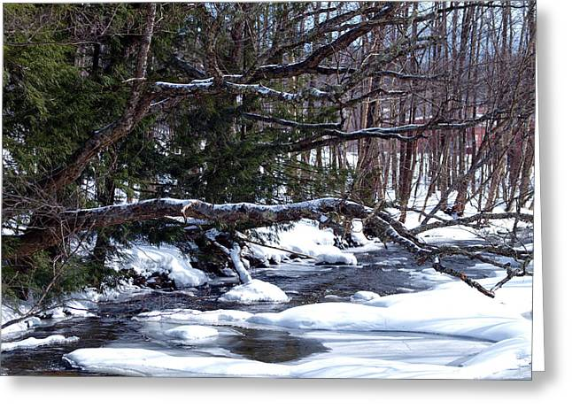 Winter Photos Greeting Cards - Stowe Vermont Greeting Card by Dave Olsen