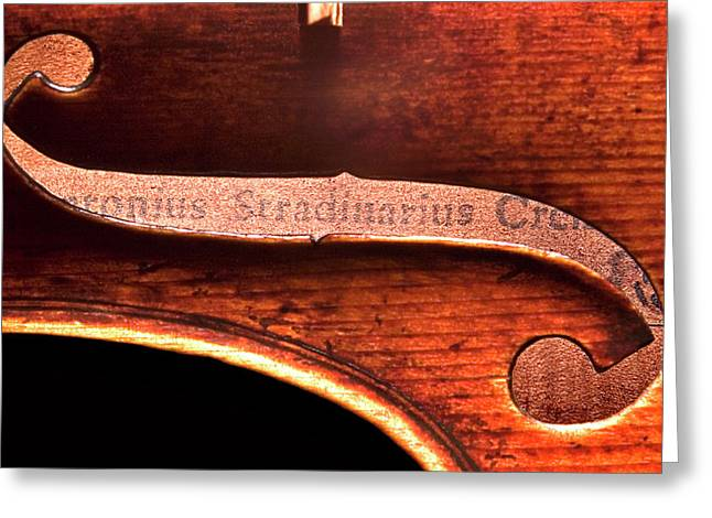 Best Sellers -  - Labelled Greeting Cards - Stradivarius Label Greeting Card by Endre Balogh