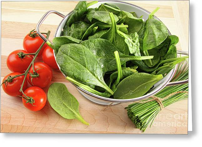 Strainer Greeting Cards - Strainer with spinach leaves and tomatoes Greeting Card by Sandra Cunningham