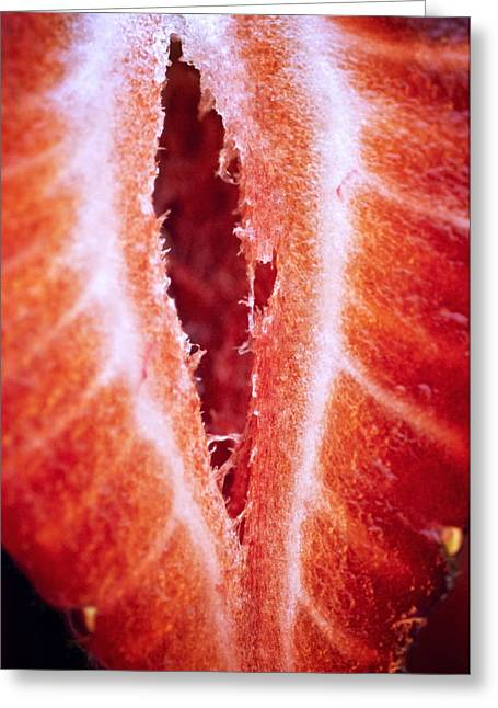 Strawberry Art Greeting Cards - Strawberry Half Greeting Card by Ray Laskowitz - Printscapes
