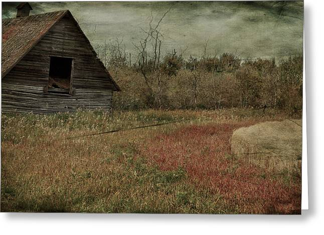 Strawberry Lane  Greeting Card by JC Photography and Art