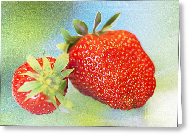 Strawberry Still Life Greeting Card by Heiko Koehrer-Wagner