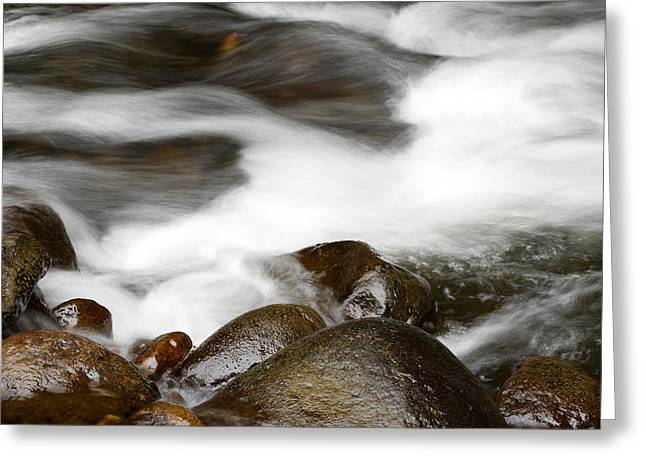 Rapids Greeting Cards - Stream flowing over rocks Greeting Card by Les Cunliffe