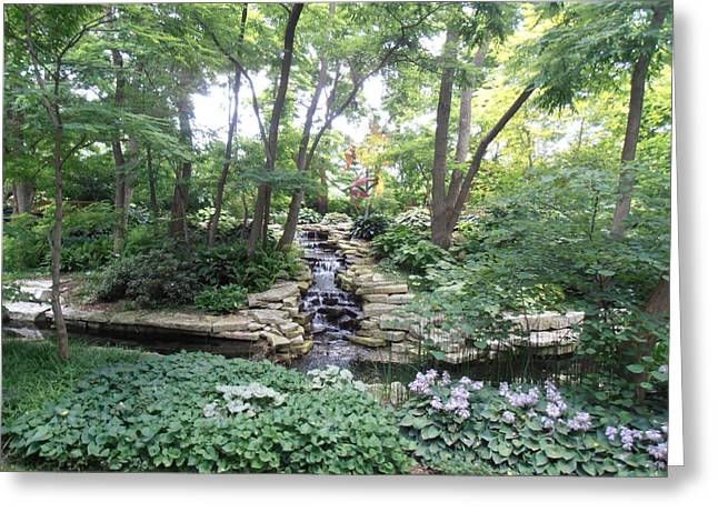 Green Day Greeting Cards - Stream in the Shade Greeting Card by Tim Donovan