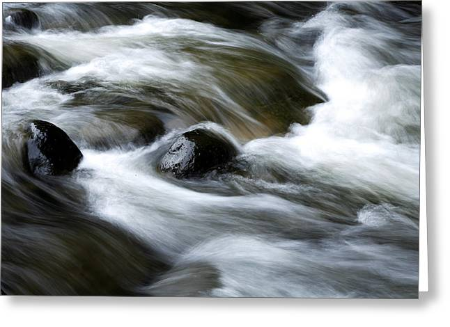 Brook Photographs Greeting Cards - Stream  Greeting Card by Les Cunliffe