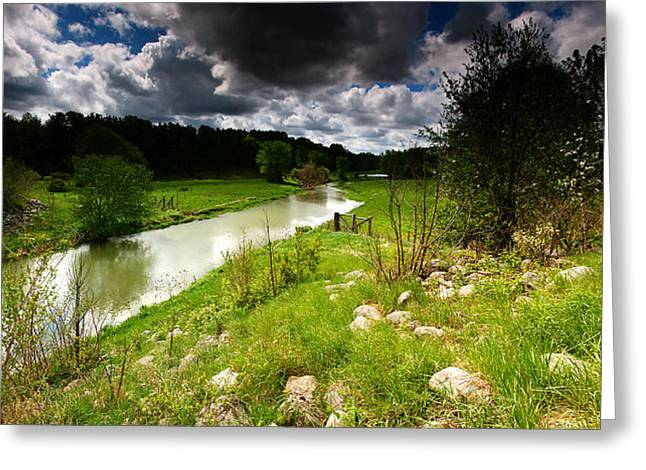 Green Grass Blue Sky Greeting Cards - Stream Pano Greeting Card by Cale Best