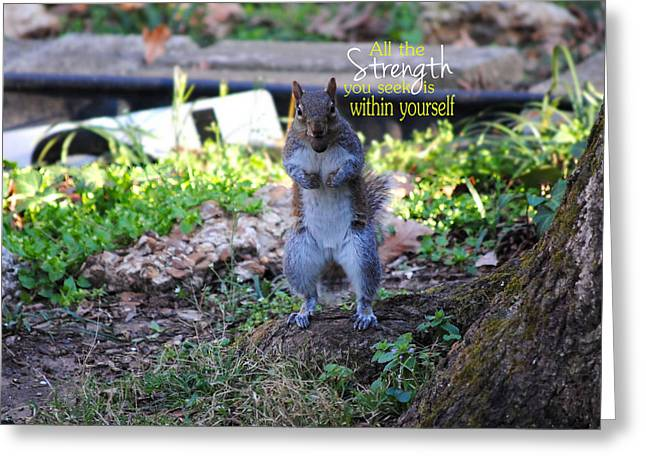 Determination Photographs Greeting Cards - STRENGTH Encouraging Squirrel Photo Greeting Card by Jai Johnson