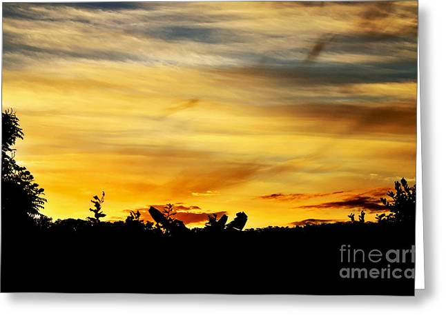 Colorful Cloud Formations Greeting Cards - Stripey Sunset Silhouette Greeting Card by Kaye Menner