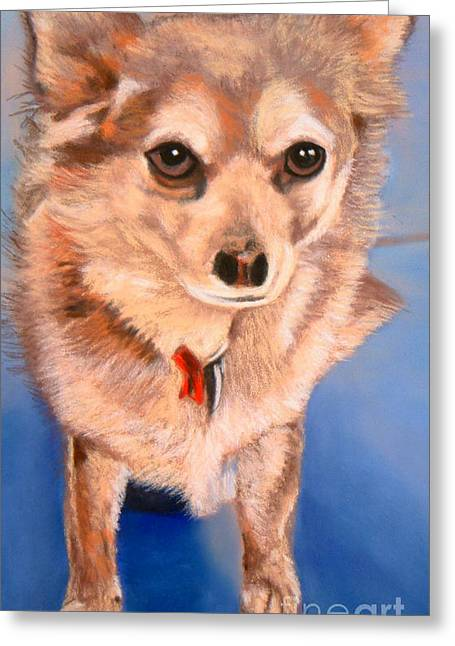 Golden Brown Pastels Greeting Cards - Stuart Greeting Card by Terri Thompson