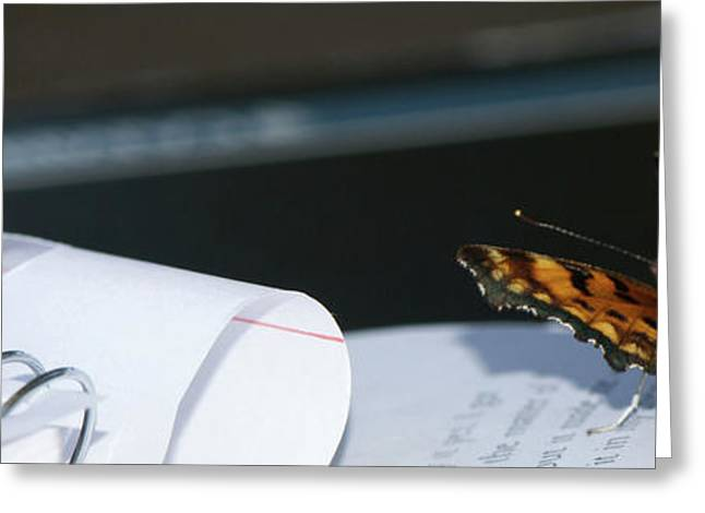 Art Book Greeting Cards - Studious Butterfly Greeting Card by Lisa Knechtel
