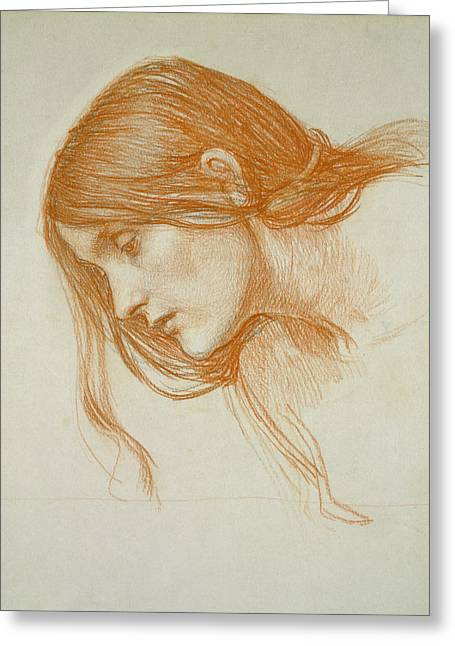 William Drawings Greeting Cards - Study of a Girls Head Greeting Card by John William Waterhouse
