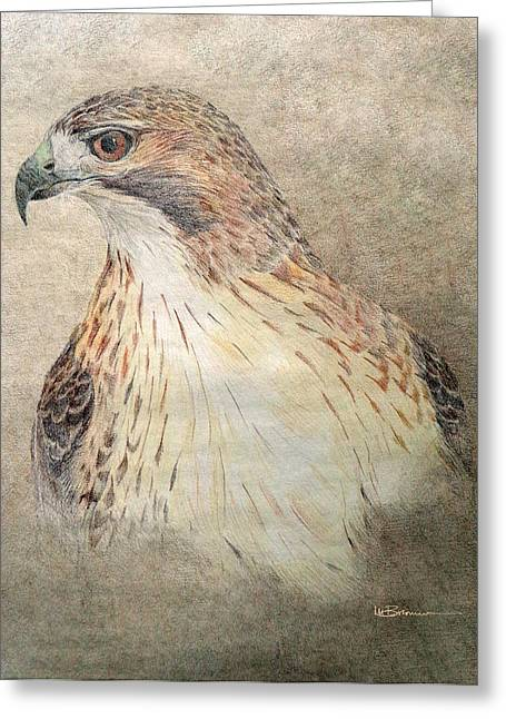 Native American Spirit Portrait Greeting Cards - Study of the Red-Tail Hawk Greeting Card by Leslie M Browning