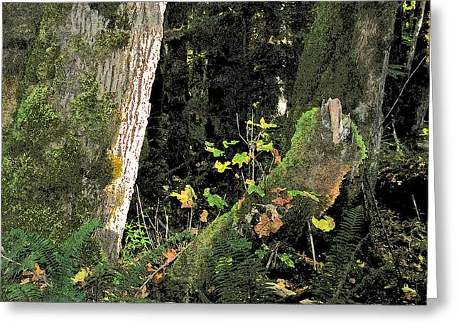 Larry Darnell Greeting Cards - Stump Wyeth Greeting Card by Larry Darnell