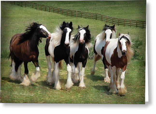 Gypsy Horse Greeting Cards - Stunning Beauty Greeting Card by Terry Kirkland Cook