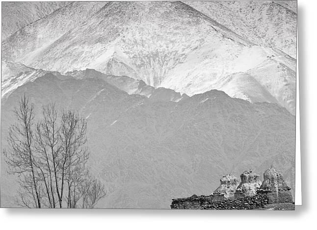 Winter White Fine Art Snow And Trees Greeting Cards - Stupa and Trees Greeting Card by Hitendra SINKAR