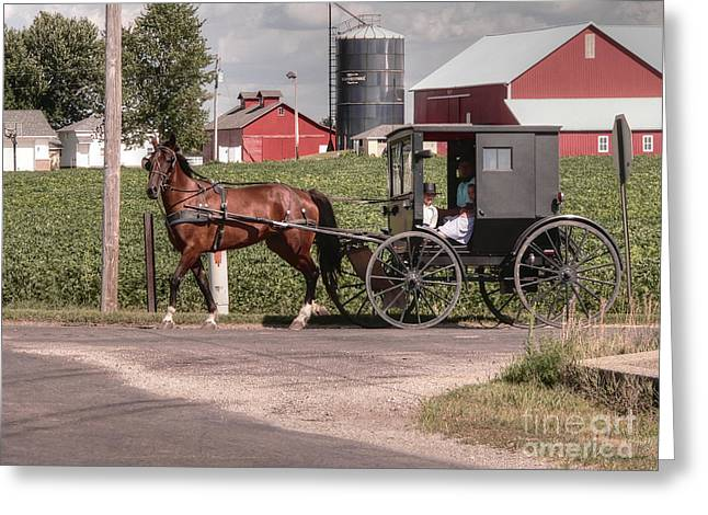 Amish Family Greeting Cards - Such grace - such serenity Greeting Card by David Bearden
