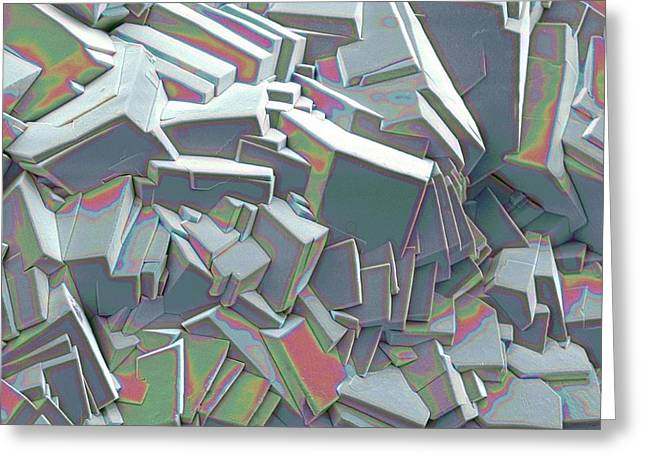 Scanning Electron Microscope Greeting Cards - Sucrose Crystals, Sem Greeting Card by Steve Gschmeissner